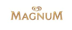 magnum ice cream treats